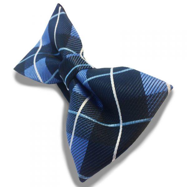 vlinderstrik-blauw-geruit